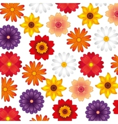 Flower floral pattern nature icon vector