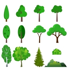 A set of different trees vector