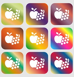 Fruits web icons sign Nine buttons with bright vector image