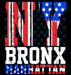 New york city america flag print and varsity for vector