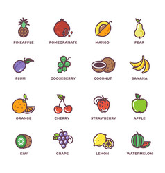 fruits raw food colored icons set vector image vector image