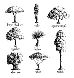 Set of hand drawn tree sketches vector image vector image