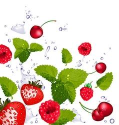 Splash of berries cherries and lime vector