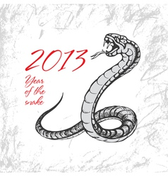 2013 snake vector image vector image