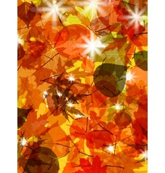Sun pushing through a varicoloured leaves eps 8 vector