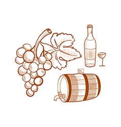 Hand drawn set with wine and grapes vector