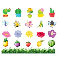 Plants and insects in the garden vector