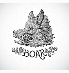 Boar head in graphic style hand drawn vector
