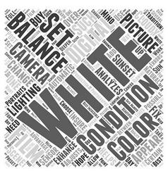 White balance word cloud concept vector