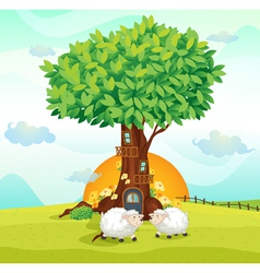 Sheeps under tree house vector