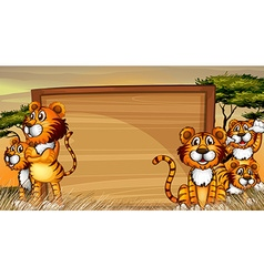 Frame template with tigers in the field vector image vector image