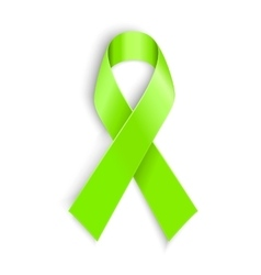 Lime Awareness Ribbon vector image vector image