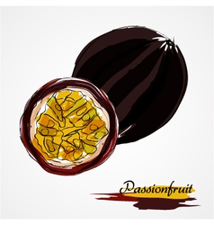 Passionfruit fruits vector