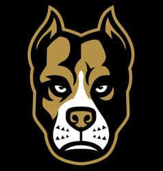 pitbull dog mascot vector image vector image