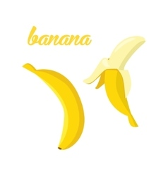 Banana fruits poster in cartoon style depicting vector image vector image