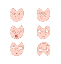 faces of pigs vector image