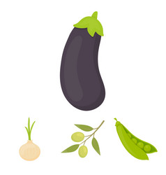 olives on a branch peas onions eggplant vector image