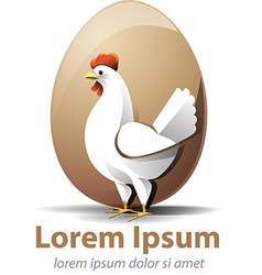 Chicken egg vector
