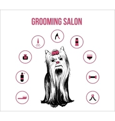Grooming pets salon concept vector