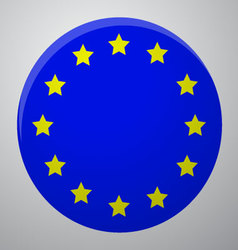 Icon European Union Flag vector image