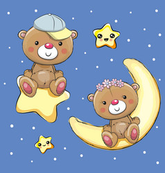 lovers teddy bears on a moon and star vector image