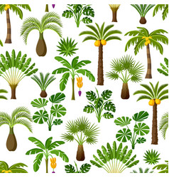 Seamless pattern with tropical palm trees exotic vector