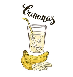 Banana milkshake in a glass glass with slices of vector image
