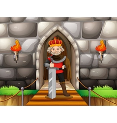 King with big sword at palace vector image