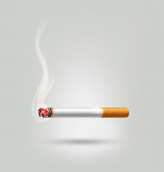 tobacco cigarette burning for advertisement vector image vector image