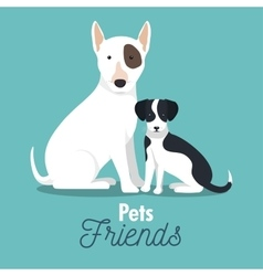 pet friends doggys animal graphic vector image