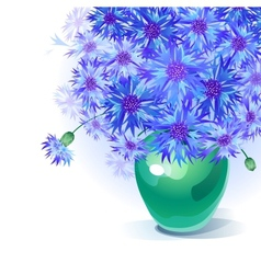 bluebottle bouquet in vase vector image