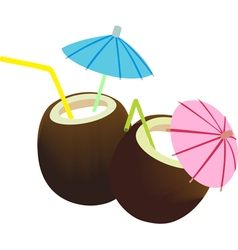 Coconut juice vector