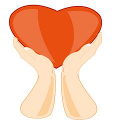 hands keeps heart vector image vector image