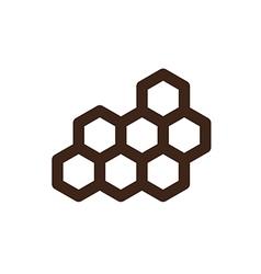 Honeycomb bee icon garden vector