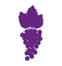 Silhouette purple color with bunch of grapes vector