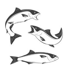 Set of monochrome fish vector image