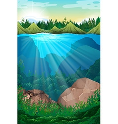Scene with sea and underwater vector