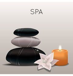 Spa with flower candle and stones vector