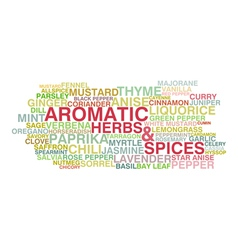 Variety of aromatic herbs and spices vector