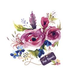 Rose watercolor vector