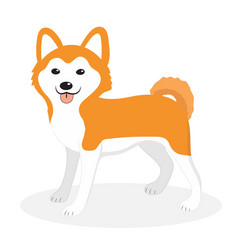 akita inu breed dog icon flat cartoon style vector image