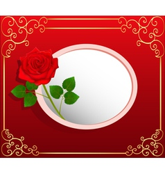 background card with red rose vector image vector image