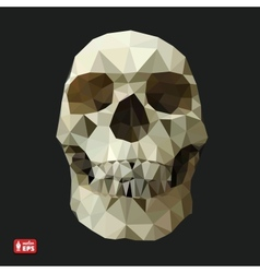 Human Skull in a Triangular Style vector image vector image