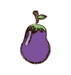 purple vegetable eggplant icon vector image