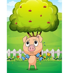 A fat pig exercising near the cherry tree vector