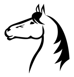 horse mazl vector image