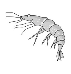 Shrimp icon in monochrome style isolated on white vector