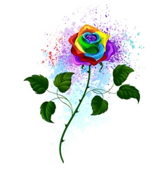 Rainbow rose vector
