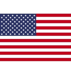 American flag image vector
