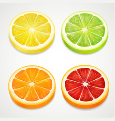 citrus slices realistic lemon orange lime vector image
